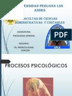 Estudio Procesos Psicologicos (1)