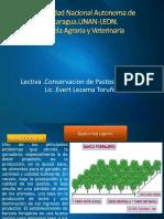 Conservacion de Pastos y Forrajes Bancos de Proteicos