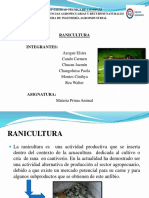 PRESENTACION RANICULTURA.pptx