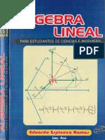 Espinoza Ramos Algebra lineal.pdf