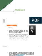 Ácidos nucleicos2