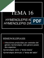 TEMA 16.ppt
