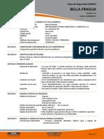 HS BELLA FRAGUA V01.2017.pdf