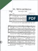 Oh, Testa Lacerada_Bach
