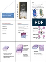Lecture 2b_Types of Tissues (Joel)
