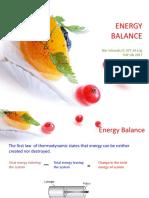 KP1_Energy-balance-of-mixing-process.pdf