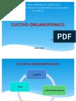 Diapositiva Labor Social Cultivos