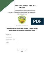 Informe Final Tintes