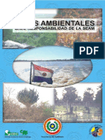 Leyes ambientales SEAM