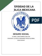 seguridad social seguros.docx