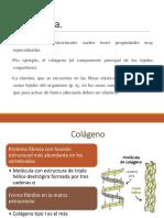 Proteínas-Funciones