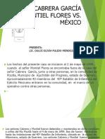Caso Cabrera Garcia y Montiel Flores vs México