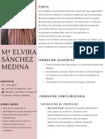 Curriculum Mª Elvira Sánchez Medina