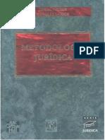 libro-metodologia-converted.docx