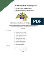 Proyecto Investigacion Palto