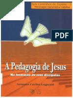 Antonio Carlos Lugnani - A Pedagogia de Jesus.