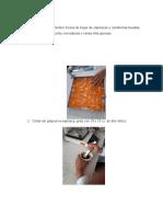 METODOLOGIA- pigmentacion.docx