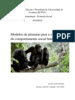 Modelos de primatas para a evolução do comportamento social humano