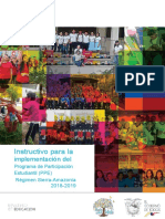 Instructivo_para_la_implem-del_PPE.doc