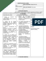 formato+auxiliar+contable