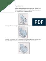 dokumen.tips_mekanisme-persalinan-sungsang.docx