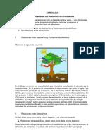 Capbiental Pregunta 2 (1)