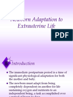 Newborn Adaptation Final PPT