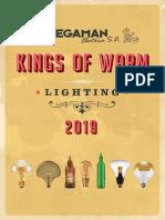 201901 Megaman Kings of Warm 2019