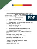 Model DEVIZ FINAL de LUCRARI Expertiza Contabila