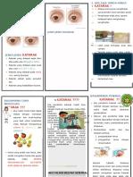 Leaflet-Katarak 2019