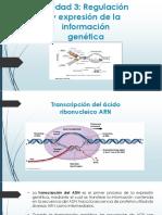Clase 9. Transcripción ARN