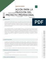 Construcción Del Proyecto Profesional