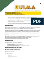 bulma-2004