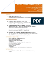 Curriculum Miguel.. (2).doc
