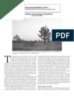 Educational Bulletin 09-2 Are Joshua trees facing extinction? By Chris Clarke