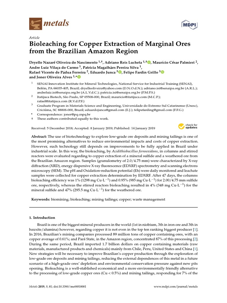 Bioleaching for copper extraction of marginal ores from the