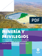 Mineria y privilegios