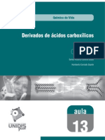 Aula 13 - Derivados de ácidos carboxílicos