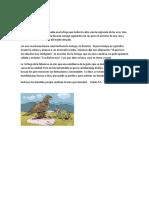 La tortuga vanidosa.docx