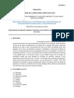 Informe Sólidos-Molienda