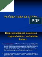 193788401-Vučedolska-kultura-ptt.ppt