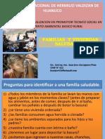 1. Familias y Viviendas Saludables