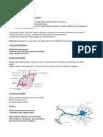 Histología sist nervioso