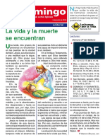 revista el domingo