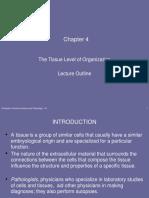 week 4 tissue levels of organizatio