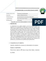 practica de campo PROTECCION AGROFORESTAL.docx