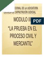 LA PRUEBA. Licda. María Elena Conde (1)