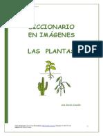 Diccionario_en_imagenes_plantas.pdf