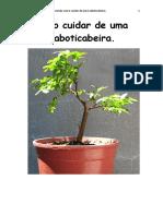 Como cuidar de uma Jaboticabeira.pdf