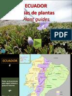 Plantas de Ecuador